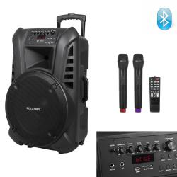 Караоке Тонколона 12 инча TN12 с два Микрофона и Bluetooth, FM радио, USB, SD card playe